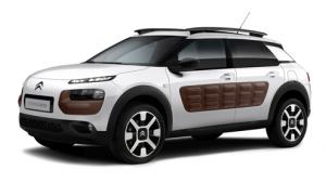 Auto Louwes nieuwe en gebruikte auto - Private lease Peugeot Citroen C4 Cactus><br> Citroen C4 Cactus vanaf EUR 349,- per maand</div></div><div class=